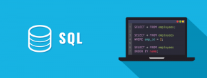 SQL Best Programming Languages