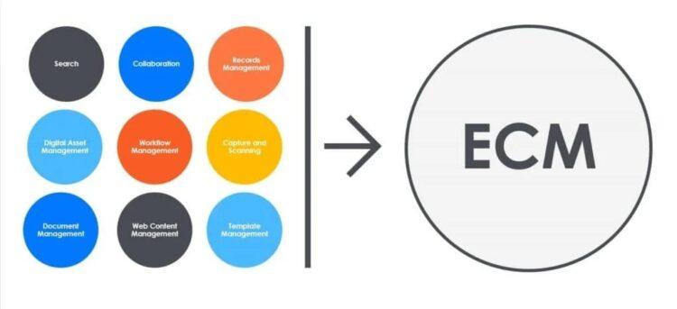 ecm services