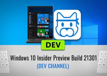 windows 10 insider preview build 21301