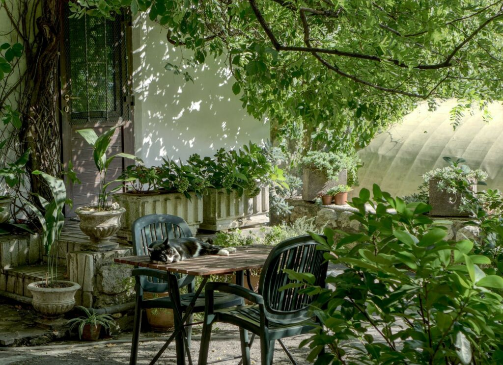 How to build a garden perfect for entertaining guests all year round