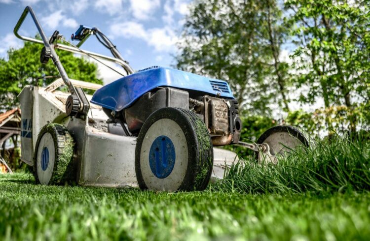best lawn care service